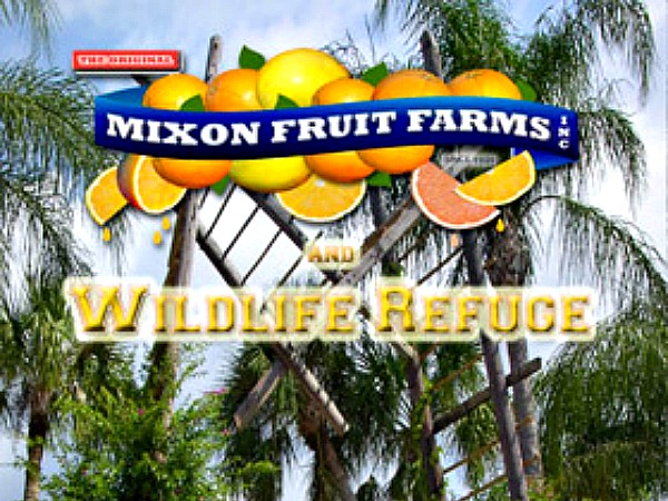Mixon Fruit Farms in Siesta Key Florida