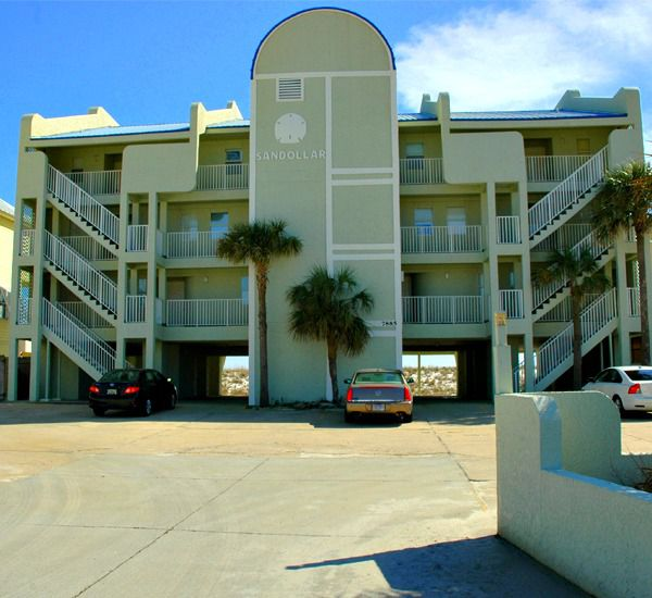 Sandollar in Navarre Florida