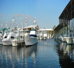 Orange Beach Marina in Orange Beach Alabama