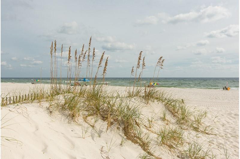 Beach at Phoenix I in Orange Beach Alabama