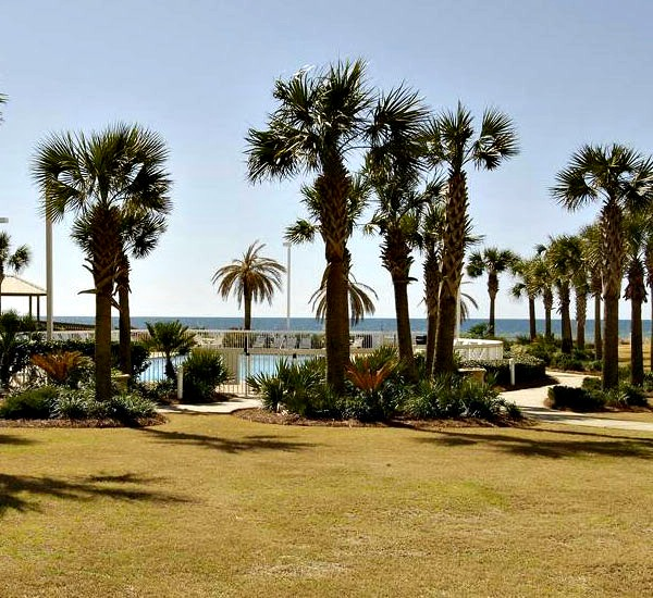 Palm Shaded Well Manicured Grounds At Seaside Beach And Racquet Club In Orange Alabama