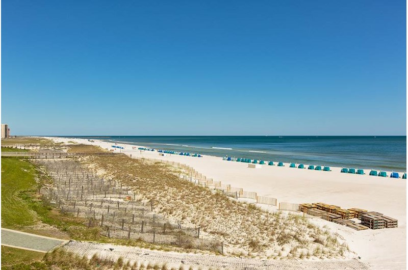 Sand and dunes make a lovely picture at The Palms Orange Beach