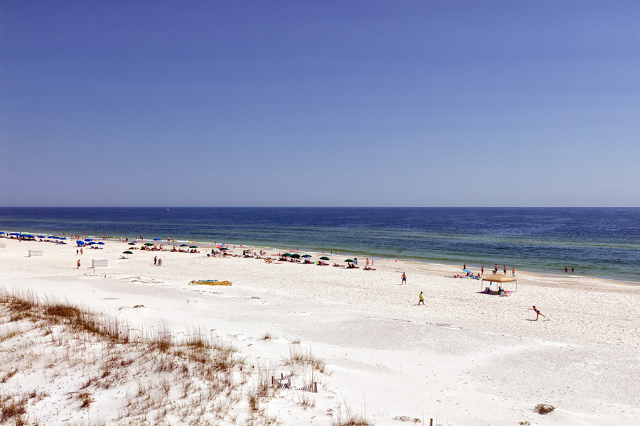 Palm Beach #41A Condo rental in Palm Beach Condos in Orange Beach Alabama - #13