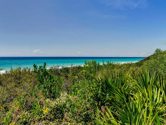 Palms B5 Condo rental in Palms at Seagrove ~ 30a Vacation Rentals by BeachGuide in Highway 30-A Florida - #28