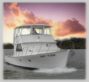 Rip Tide Charters in Orange Beach Alabama