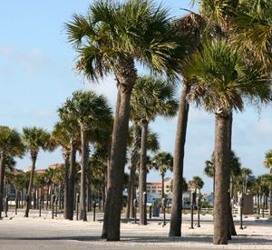 Sand Key Park in Clearwater Beach Florida