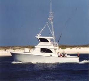 Sea Hunter in Orange Beach Alabama