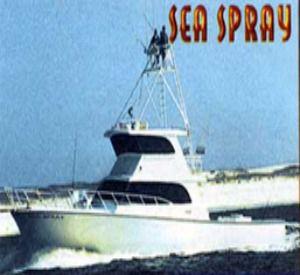 Sea Spray in Orange Beach Alabama