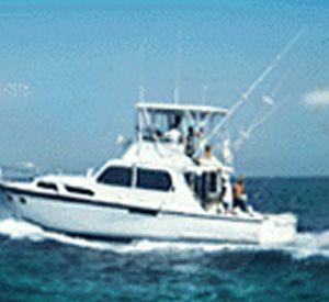 Southern Hooker in Panama City Beach Florida