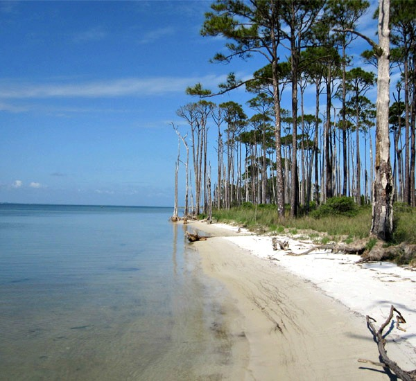 St. George Island State Park in St. George Island Florida