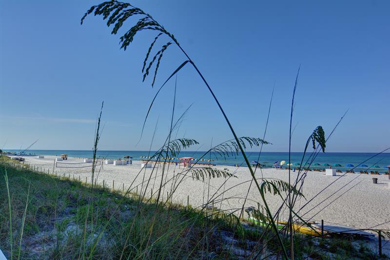 Sterling Reef 506 Panama City Beach Condo rental in Sterling Reef in Panama City Beach Florida - #24