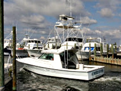 Summer Hunter Charters in Gulf Shores Alabama