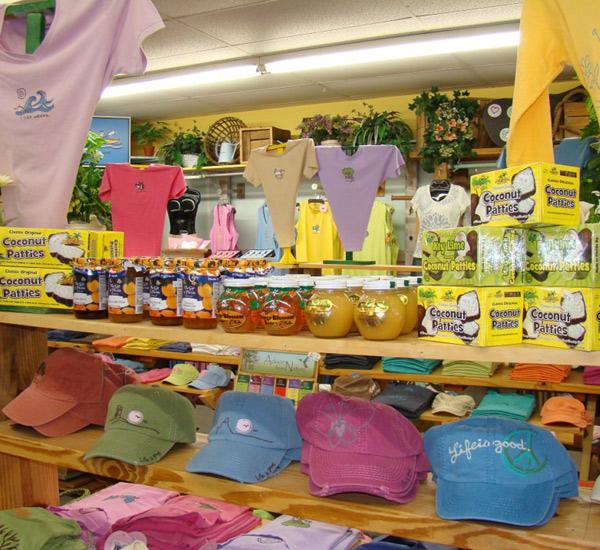 Sun and Surf Beach Shop in Anna Maria Island Florida