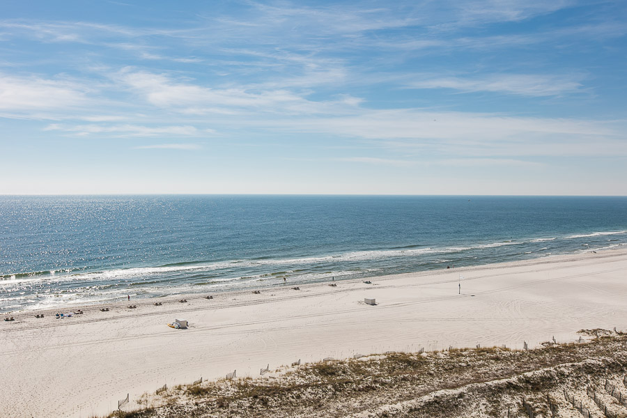 Turquoise Place #D601 Condo rental in Turquoise Place in Orange Beach Alabama - #35