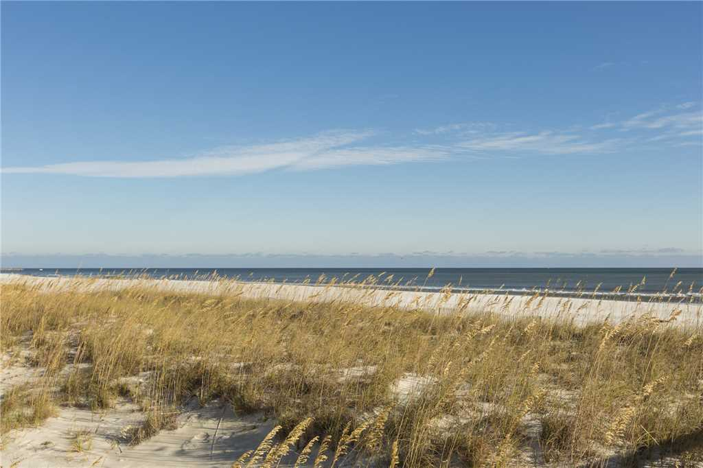 Turquoise Place #D601 Condo rental in Turquoise Place in Orange Beach Alabama - #61