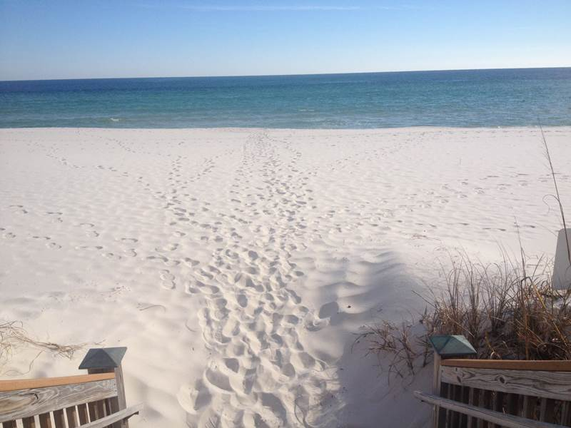 Windemere 1408 Plus Cabana Condo rental in Windemere Perdido Key in Perdido Key Florida - #48