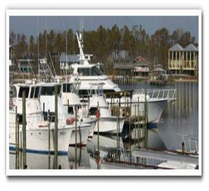 Zekes Charter Fleet in Orange Beach Alabama